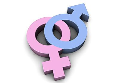 letters on the equality of the sexes significant personality differences between and 23387